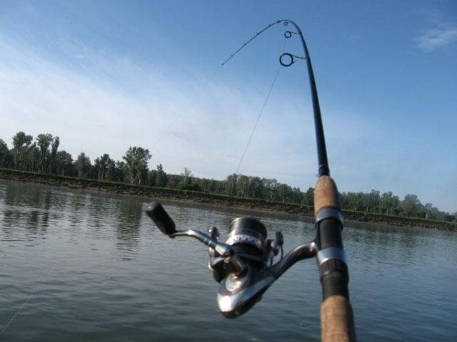 удочки для летней рыбалки в саратове